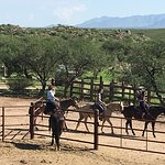 Tombstone Monument Ranch-billede
