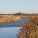 Shiawassee National Wildlife Refuge waterways.