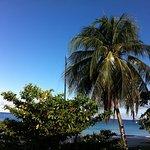 Nautilus Beach Apartments Foto