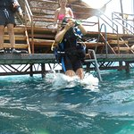 Photo of Shams Alam Beach Resort