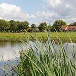 Herrliche ländliche grüne Umgebung nah (2 km) der Stadt Delft.