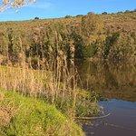 Photo de Stonehill River Lodge