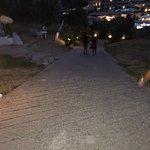 Foto de Vassilias Beach Apartments