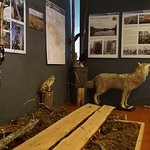 The Recreational Fishing Museum of Finland