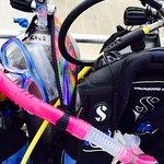 Dive Key West Foto