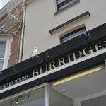 Burridge's with a hopeful seagull