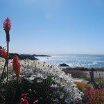 Sea Rock Inn Foto