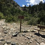 Zapata Falls trail beginning