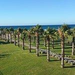 Hotel Delfina Beach Foto