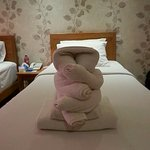 Our serene towel monkey