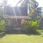 Photo of Coconut Garden Resort