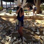 Photo de Hotel RH Corona del Mar