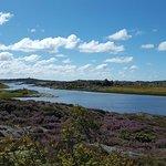 Foto di Southern Goteborg Archipelago