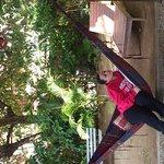 Foto de Che Lagarto Hostel Paraty