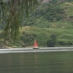 True swallows and amazons