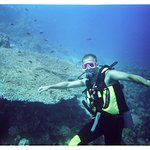 Foto de Red Sea Coral Reef Snorkeling at Ras Mohamed National Park with Lunch