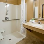 Roll-in shower in an ADA accessible room.