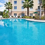 Photo of Holiday Inn Express Hotel & Suites New Tampa I-75 Bruce B. Downs