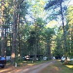 A section of the campsite