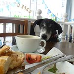 Pixie thought the steak baguette was exceptional