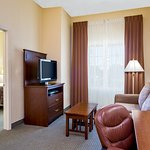 ADA/Hearing Accessible One Double Bed Suite