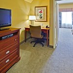 Holiday Inn Hotel Express & Suites West Hurst Foto