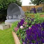 Tranquillity gardens