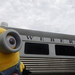 Webers from a Minions view