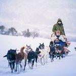 Tromso Villmarkssenter Foto