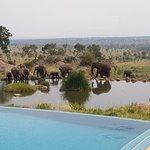 Four Seasons Safari Lodge Serengeti Foto