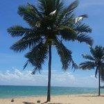 Photo de Ocean Park Beach