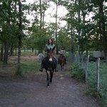 Caballo Loco Art Equestre