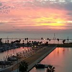 BEST WESTERN Corpus Christi Foto