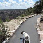 Rim Trail Foto