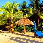 Island Bay Resort Foto