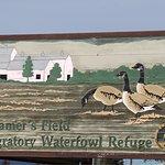 Creamer's Field Migratory Waterfowl Refuge Foto