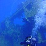 LEPIA Dive Centre Foto