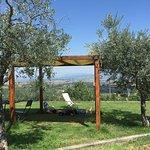 Photo of Agriturismo Ripaiani