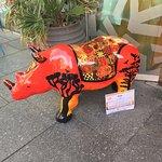 Rhino Outside