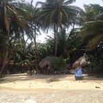 Foto de Little Corn Beach and Bungalow