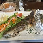 Grilled fish with jacket potato, it was good.