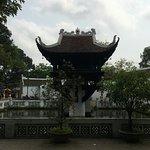 IMG_1269_large.jpg