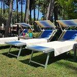 relax in pineta