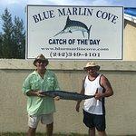 Blue Marlin Cove Foto
