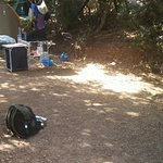 Photo de U Pirellu Camping