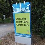 Enchanted Forest Elaine Gordon Park Foto