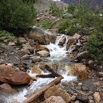 Along the trail to Mt. Edith Cavell and Angel Glacier