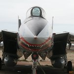 Head on view of the F-14 Tomcat