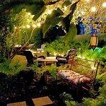 Our secret back yard garden