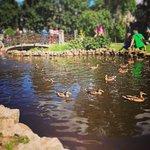 Foto de Pilsetas kanals
